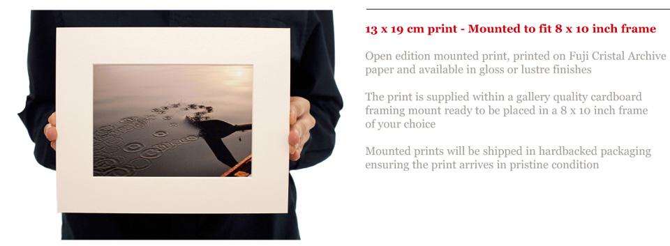 Denizen Prints